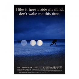 "POLAR SKATE CO DVD ""I LIKE HERE INSIDE MY MIND,DON'T WAKE ME THIS TIME."""